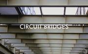 Circuit Bridges